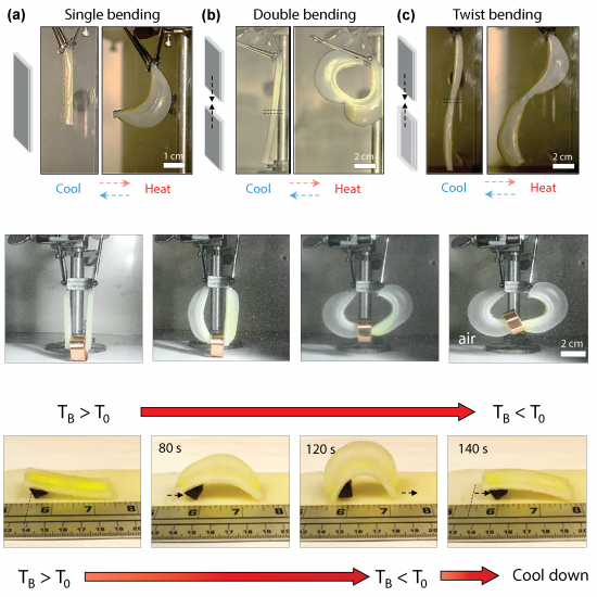 Kang, D. J.*; Ahn, S.*; Yarin, A.†; Anand, S.†, (2018) Programmable Soft Robotics Based on Nano-Textured Thermo-Responsive Actuators (*Equal Contribution, †Corresponding Author)