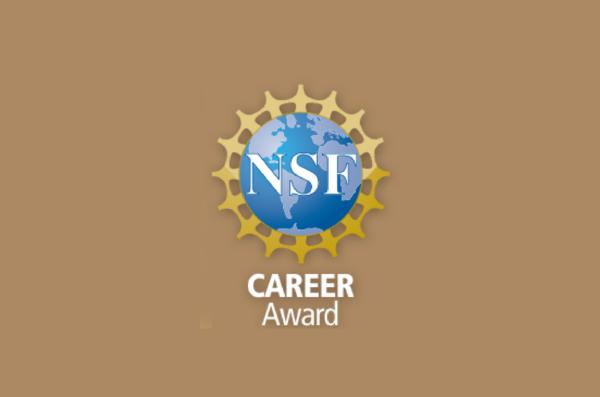NSF CAREER Award